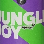Beer Project Brussels Jungle Joy Passion & Mango Ale