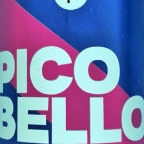Beer Project Brussels Pico Bello