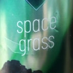 FrauGruber Space Grass