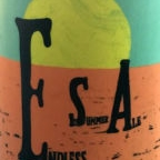 Stibergets Endless Summer Ale New Wave